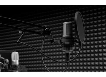 Звукоизоляция студии звукозаписи